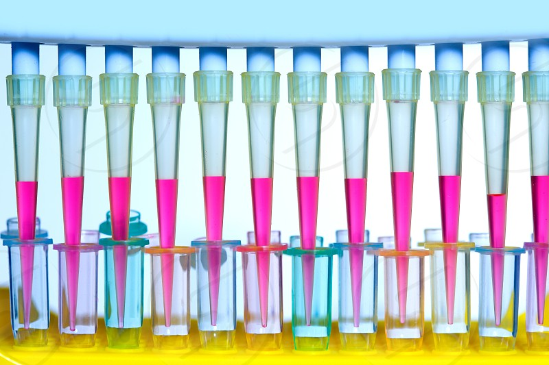 Chemical scientific laboratory multi channel pipette and test tubes photo