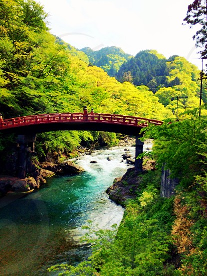 A gorgeous bridge in the mountains of Japan photo