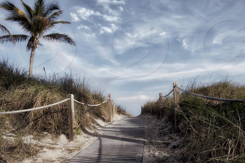 Miami Beach - Florida photo