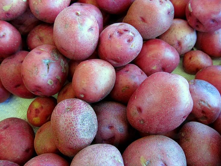 Red skin potatoes photo