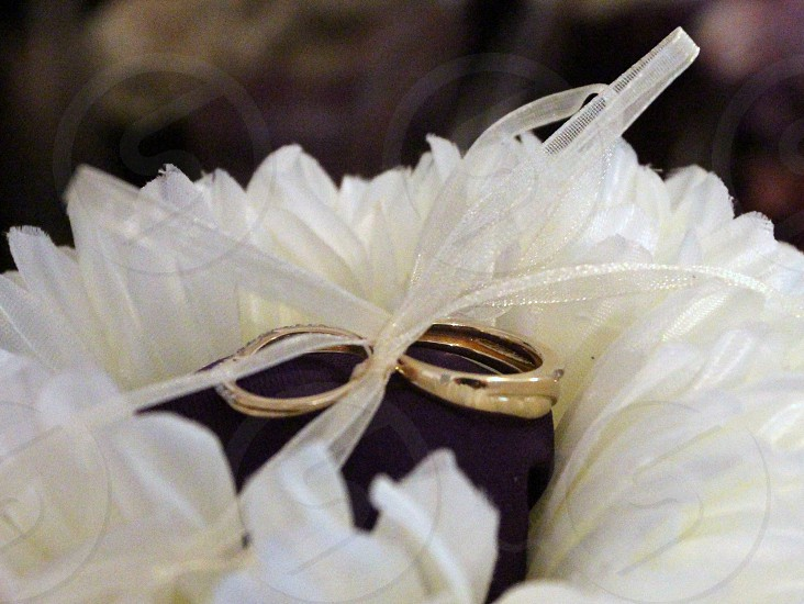 Wedding rings ties to purple box in middle of white flower arrangement photo