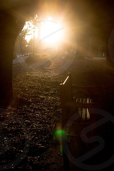 brown bench chair on sunset view  photo