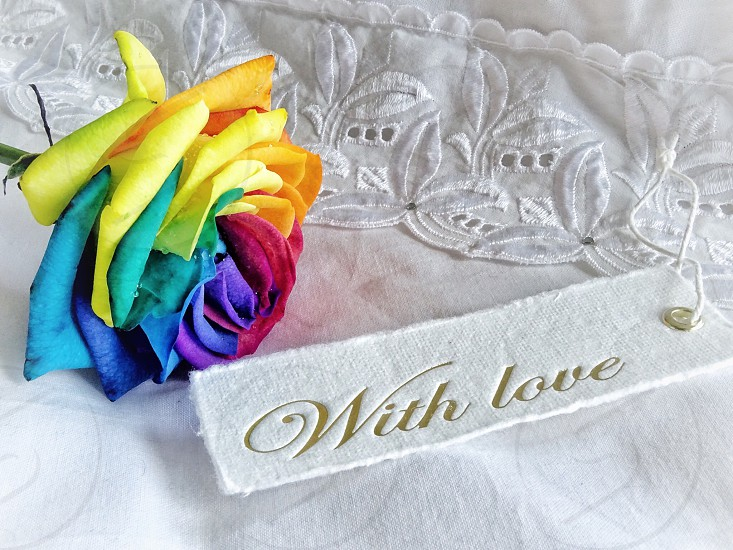 rainbow rose golden quote colorful multicolored flowerhead flower rose bright and colorful words text golden letters with love cotton fabrics bed sheet love photo