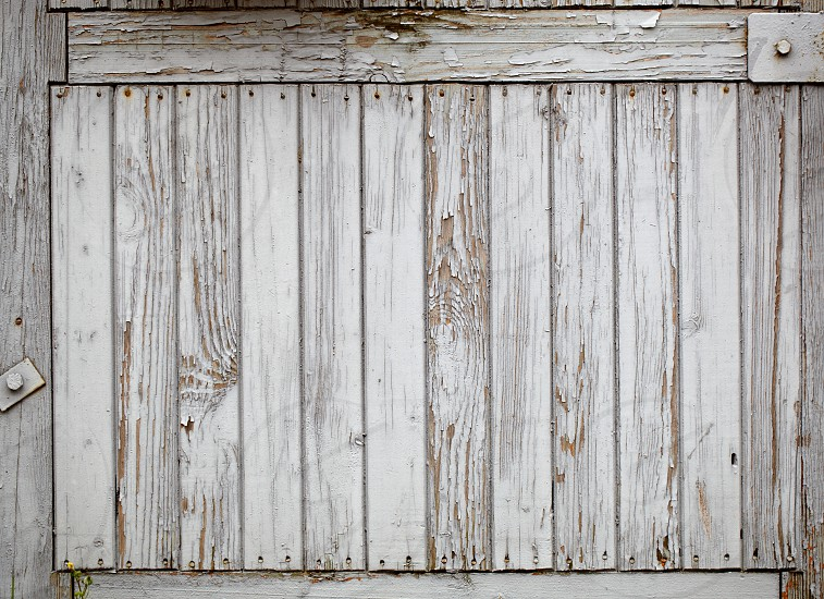 Grey wooden wall vintage background. photo