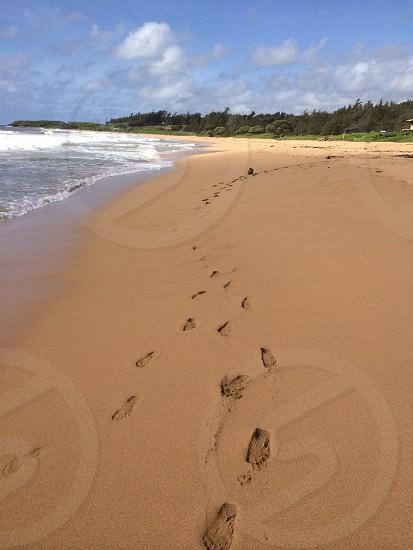 Footprints in the sand...Kaelia Beach Kauai Hawaii photo