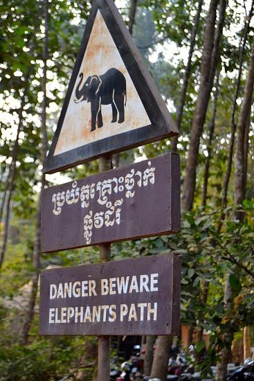 black elephant danger beware signage photo
