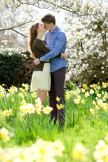 Couple kissing in a spring garden setting with yellow daffodils and white blossom she is wearing a yellow dress and brown cardigan and he is wearing a blue shirt and great trousers. The photo is taken in a portrait composition with copy space around the couple. photo