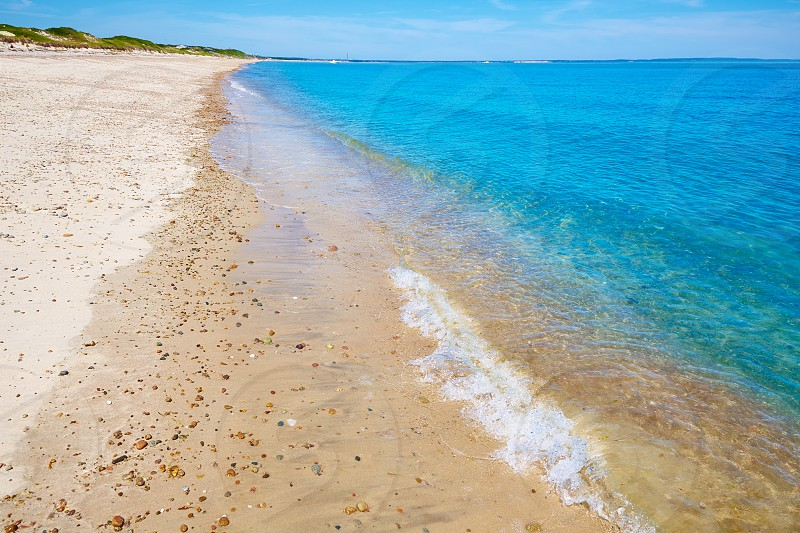 Cape Cod Sandy Neck Beach in Barnstable Massachusetts USA photo