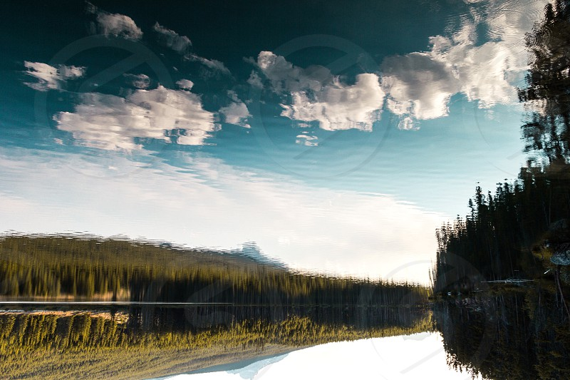 body of water near green trees under white clouds at daytime photo