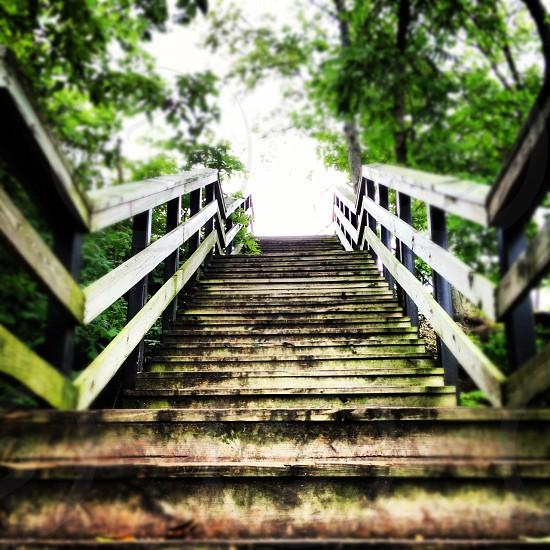 """""""Stairway to Heaven"""" Hayden Falls Columbus OH photo"""