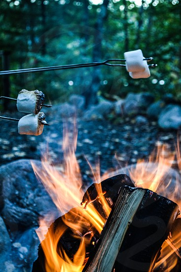 Fire and marshmallows  photo