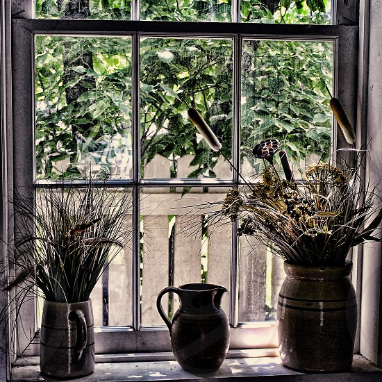 A collection of Pottery jugs on a windowsill holding dried bouquets  photo