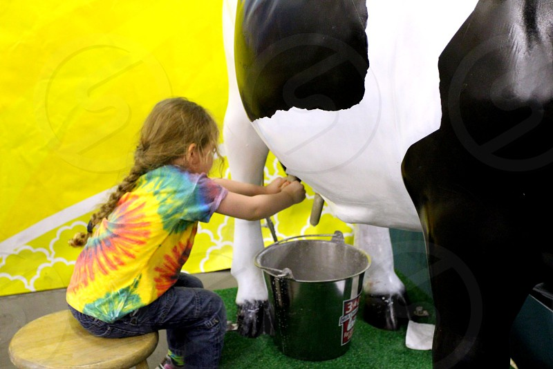 Girl milking fake cow photo