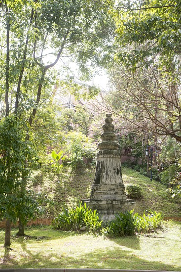 the Wat Phnom Park in the city of Phnom Penh of Cambodia.  Cambodia Phnom Penh November 2017 photo