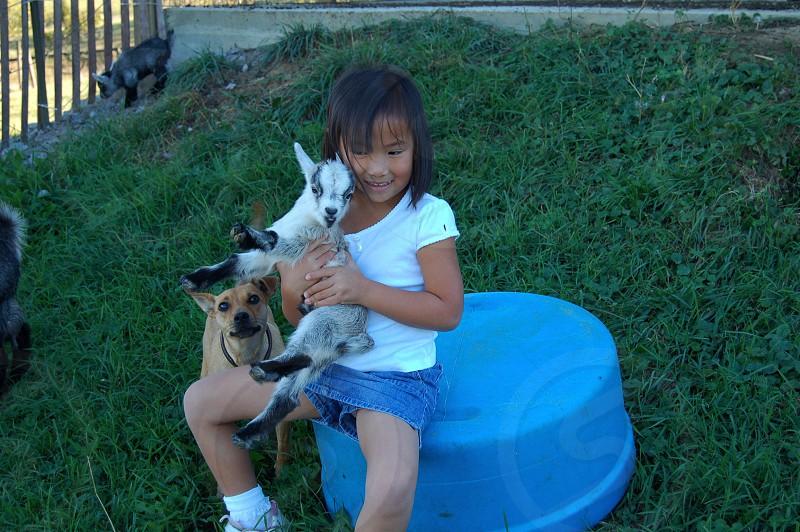 Farm life. Dog goat little girl photo