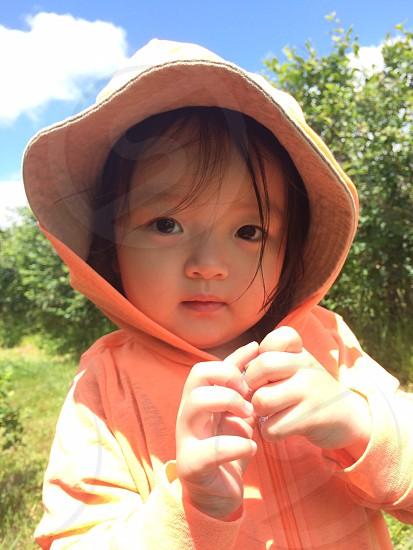 PYO blueberry farm child cute toddler photo