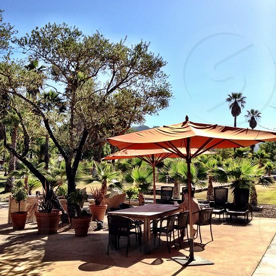Indian Springs Resort. Calistoga California  photo