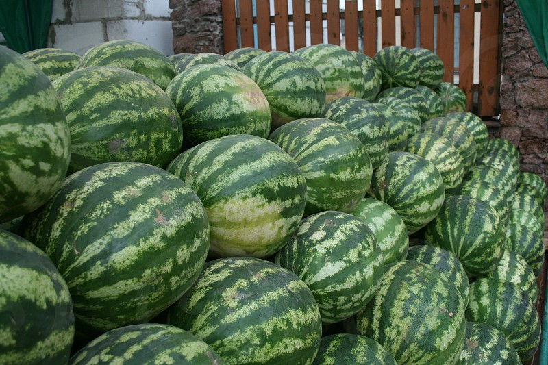 stacked watermelons photo