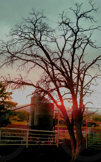 Sunset at Grandpa's Farm  sunset tree fence grain storage country farm photo