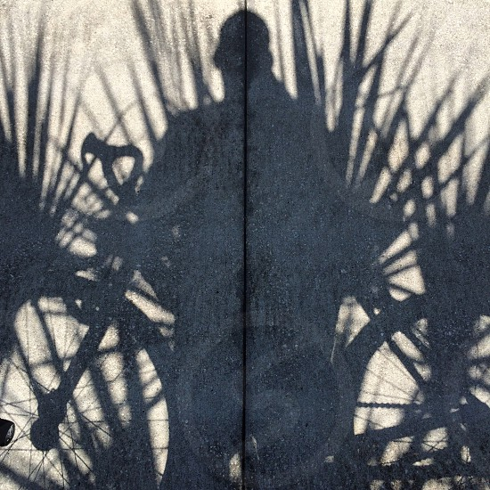 man with near bicycle and grass shade photo