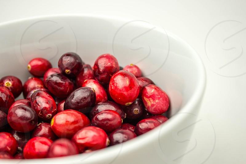 Cranberry Thanksgiving photo