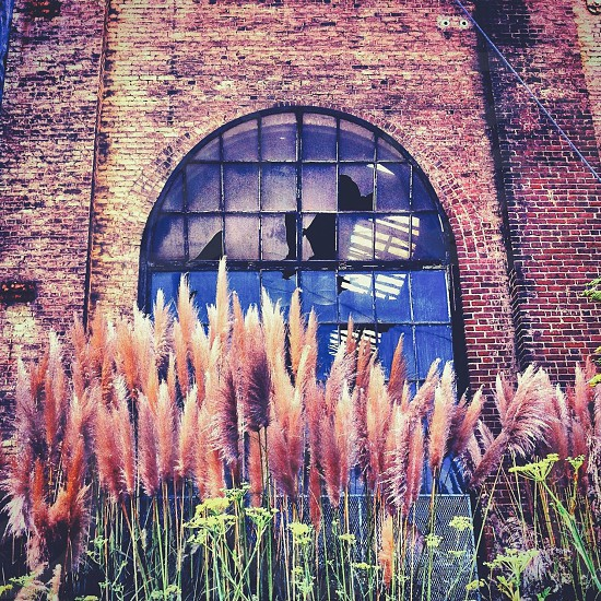 Abandoned building old warehouse  photo