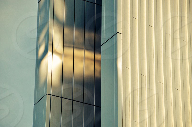 white blinds photo
