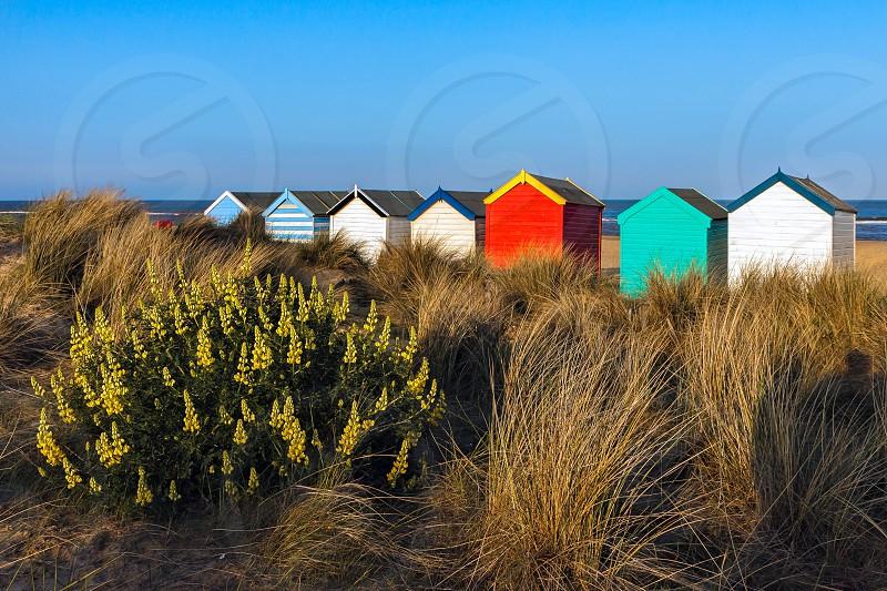 Colourful Beach Huts on Southwold Beach photo