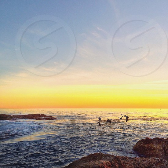 view of a sunset on the ocean photo