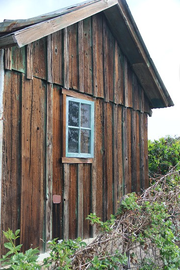 brown wooden house photo