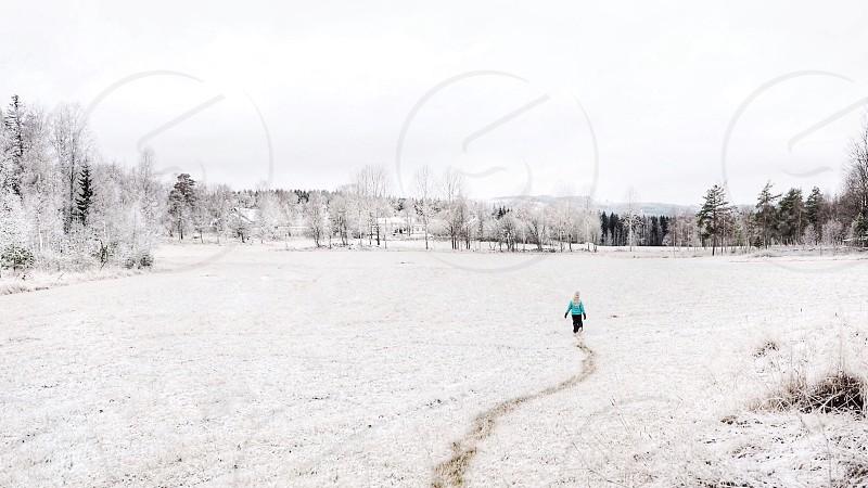 Frozen trial tracks walking winter landscape child cold  photo