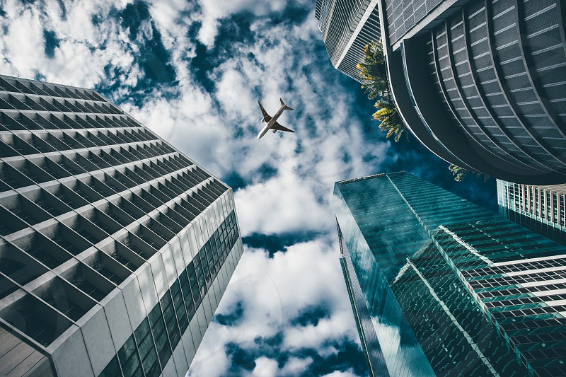 Airplane and Skycrapers photo