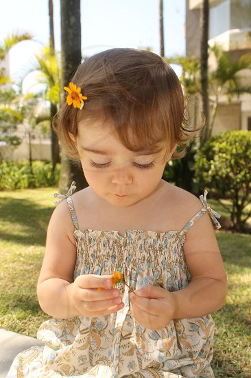 toddler holding orange flower while  sitting on green grass photo