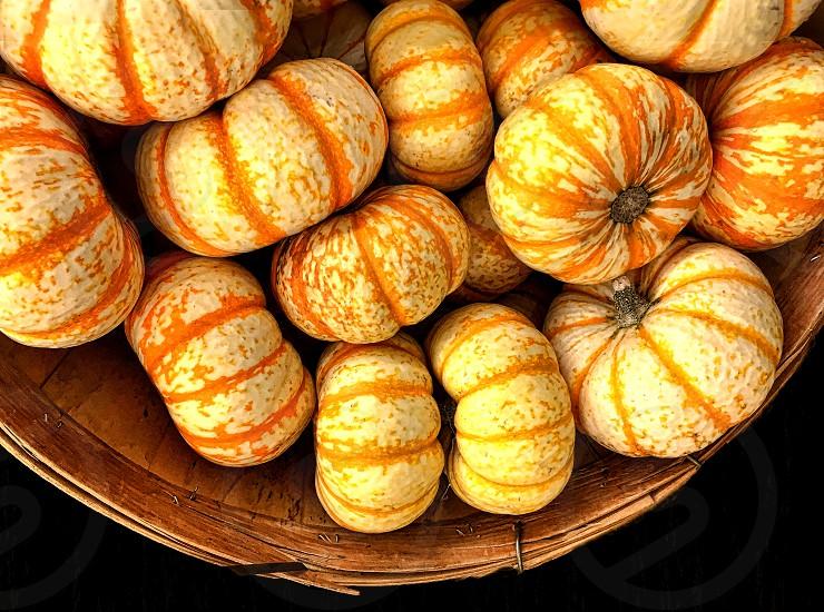 Orange and yellow striped mini pumpkins photo