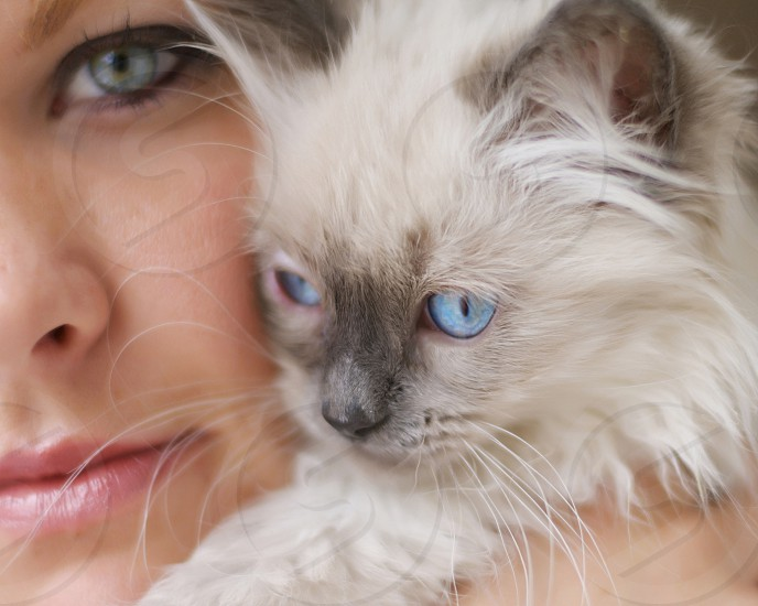 A girl with her kitten close up photo