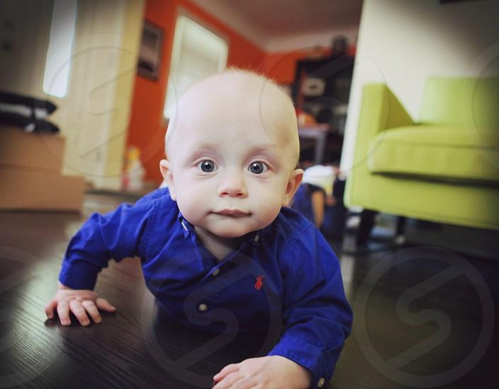 baby blue polo dress shirt photo
