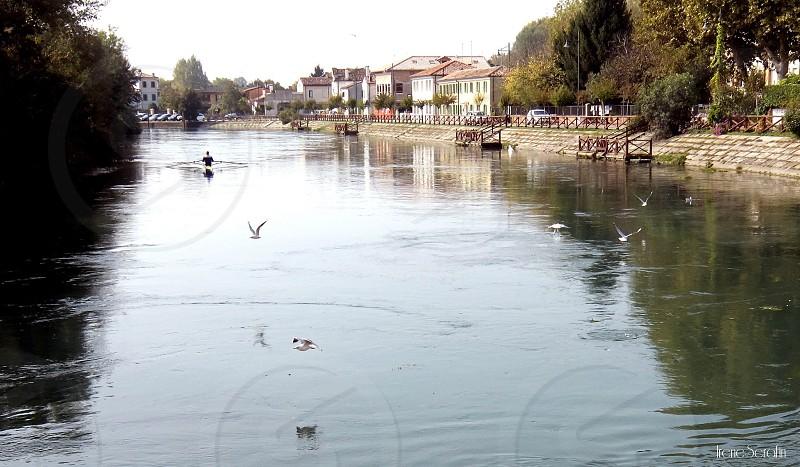 River Sile in Treviso photo