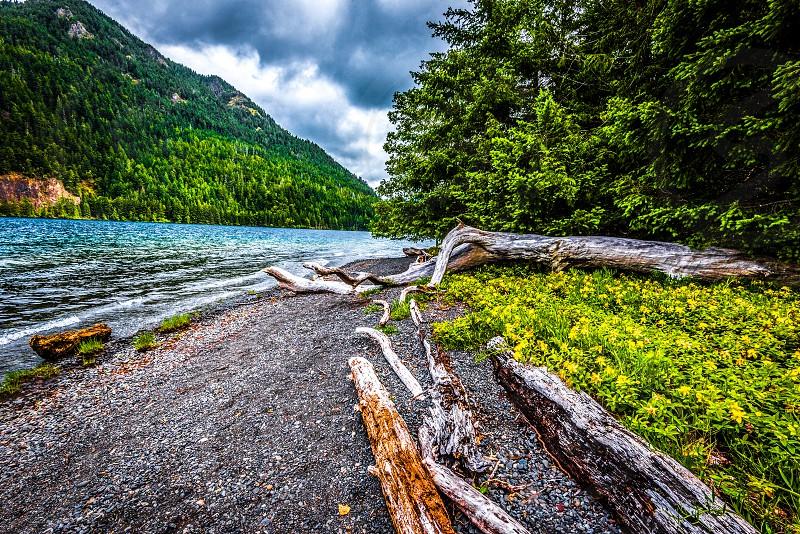 Crescent Lake Olympic National Park WA. photo