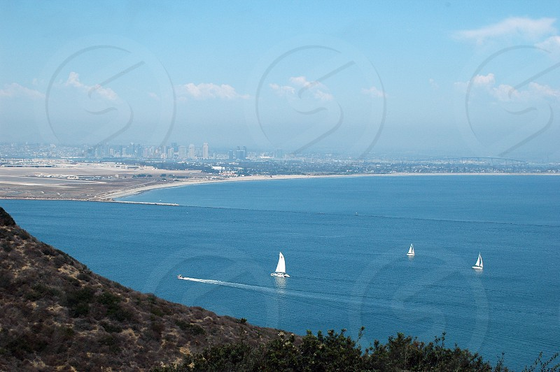 Sailboats in the Harbor in San Diego California with the downtown skyline and Coronado Bridge in the background photo