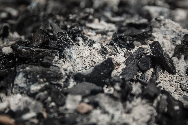 Dry charcoal and Ash - Close Up Selective Focus