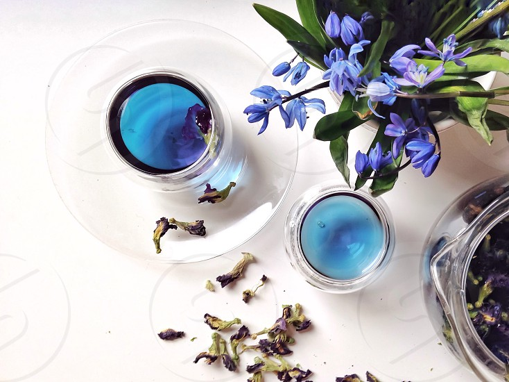 Bouquet  of snowdrops and blue tea ( butterfly pea.  photo