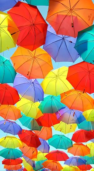 diverse colored umbrellas photo