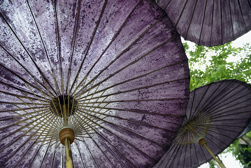 THAILAND UMBRELLA photo