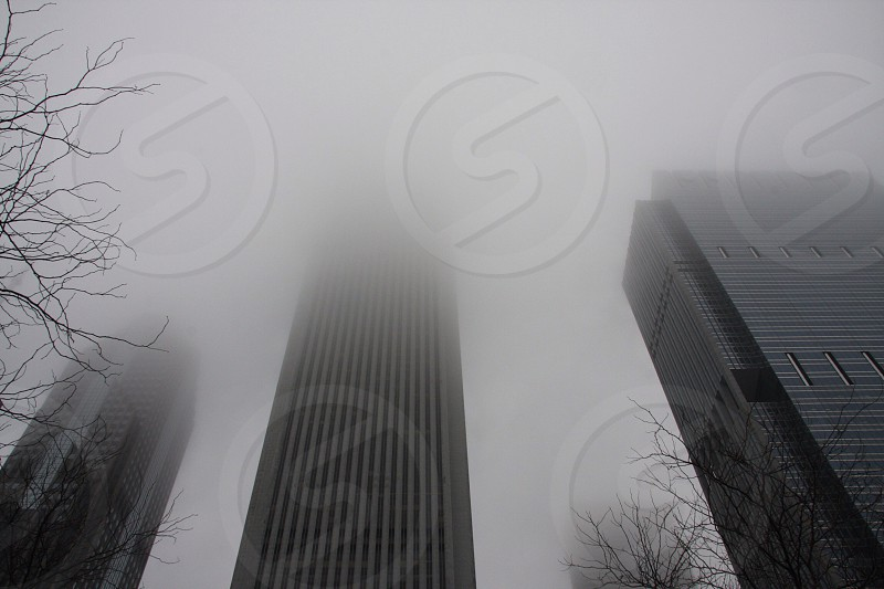 Chicago building on a foggy day. Traveling fun.  photo