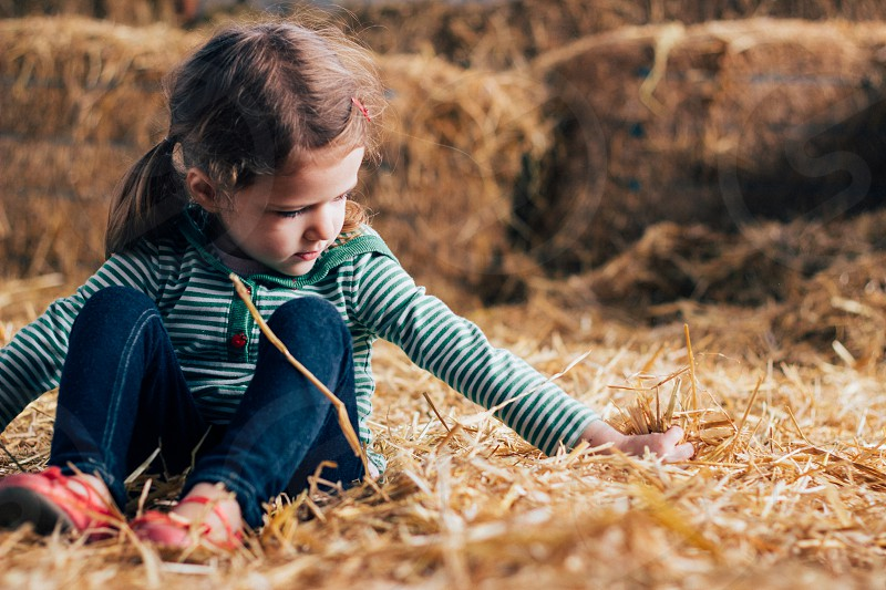 a young girl playing in the hay in a barn at a farm photo