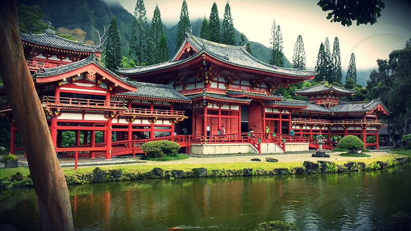 Buddhist Temple Oahu photo