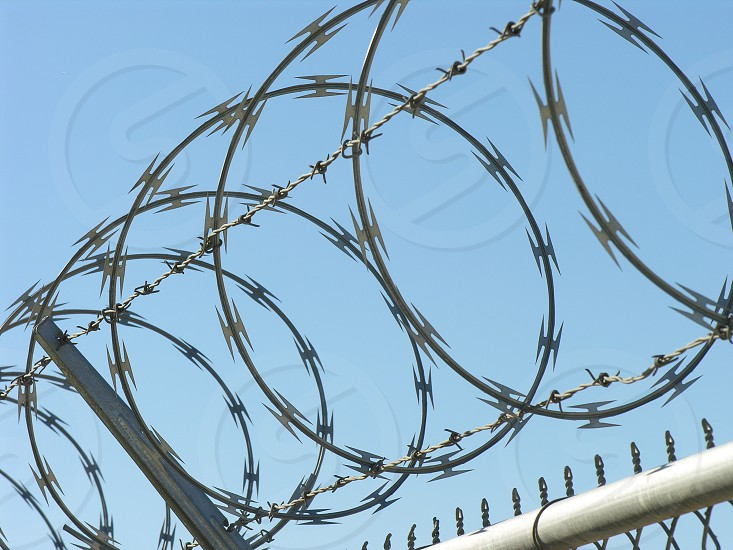 Barbed wire fencing photo