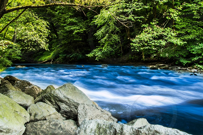 A blue river in the middle of a forest. photo