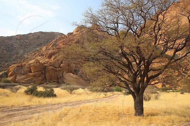 Namibian Landscape photo