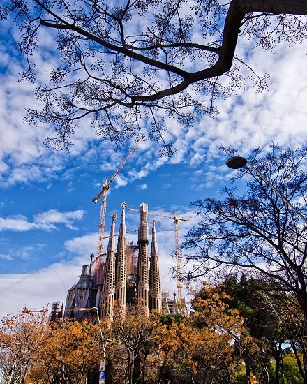 Barcellona photo